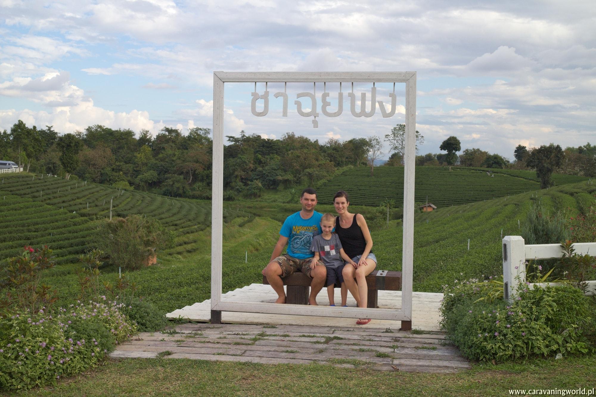 Pamiątkowe zdjęcie na plantacji herbaty