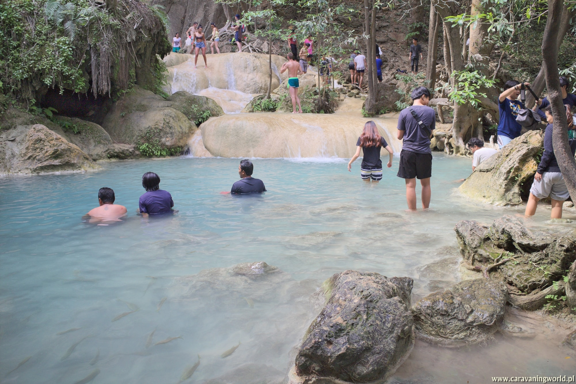 Pływające rybki w Erawan Waterfalls