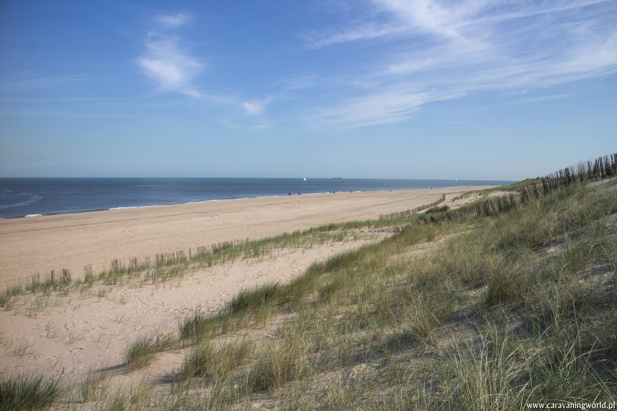 Plaża Maasvlaktestrand