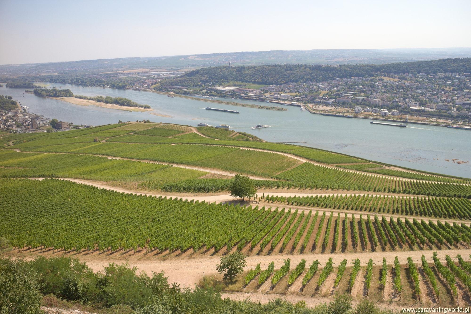 Szlakiem wina – Rüdesheim am Rhein