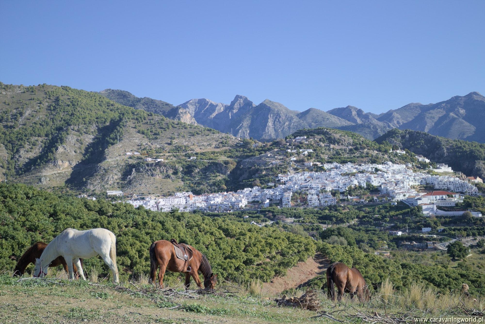 Białe miasteczka i… wioska Smerfów