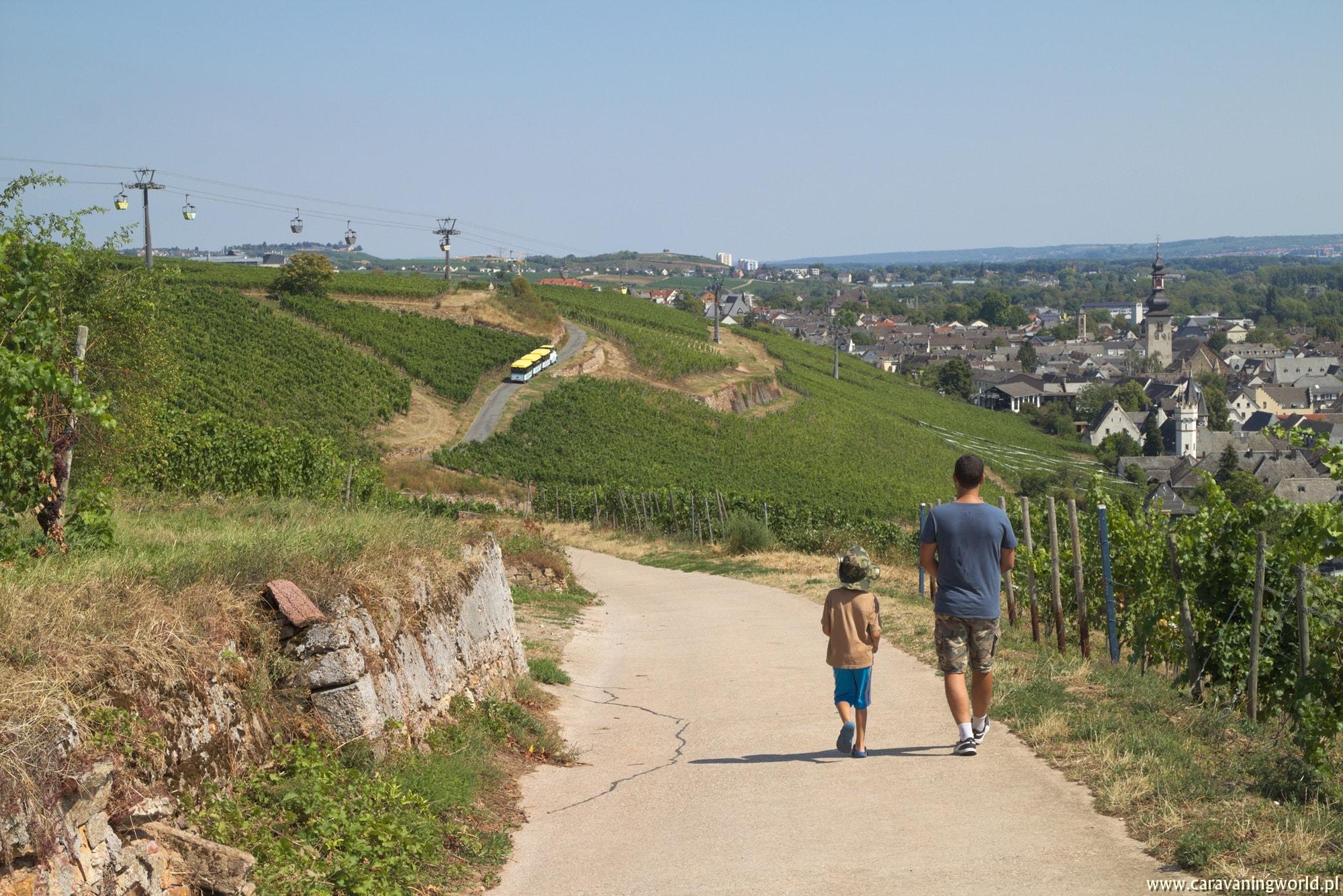 Z widokiem na Rüdesheim